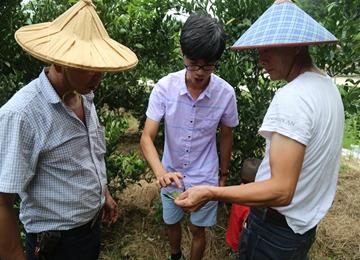 漳浦县厦漳协作果蔬种植技术培训班开班