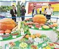 """蔬菜凌空生长、动植物""""跨界""""融合、大型浮雕拼创意 今年农博会 """"游点""""不一般"""
