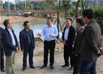 县长黄庆华调研指导龙湖公园项目建设